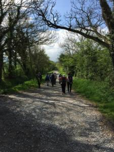 ACWW walk 2019, around Cockermouth
