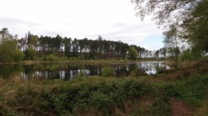 Muncaster Tarn – Centenary Walk part 1